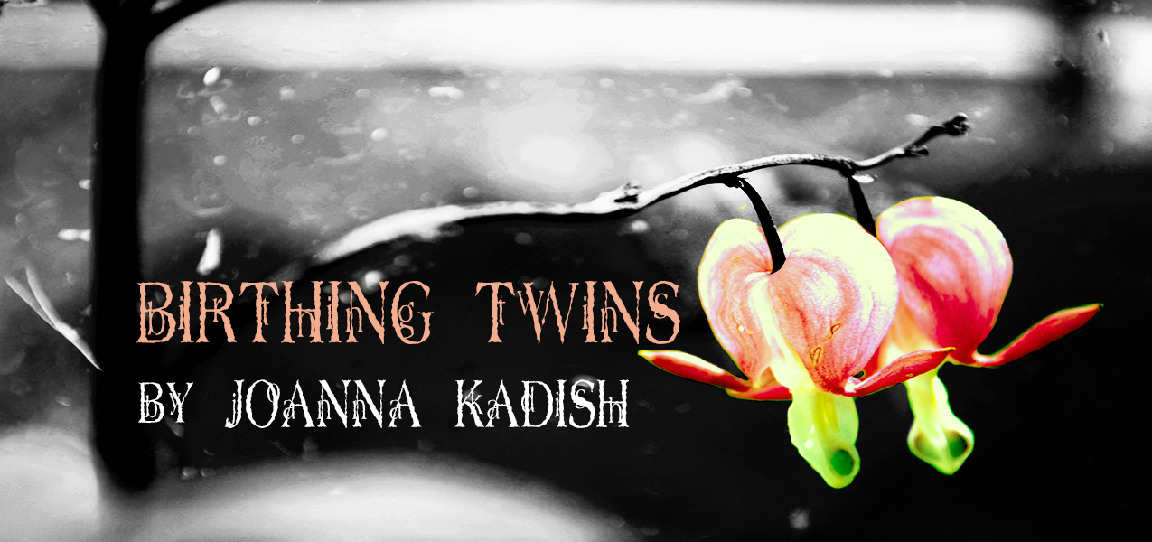 Birthing Twins Title Banner